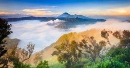 Nationalpark auf Java